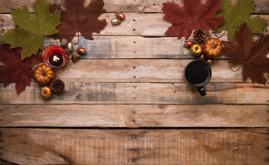 acorns-autumn-autumn-decoration-730286